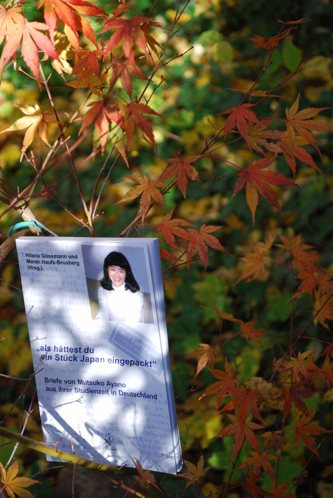 Buch-Cover von Mutsuko Ayano an einem Ast herbstlich gefärbten Japan-Ahorns